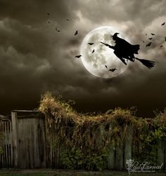 "Magick Wicca Witch Witchcraft: ""Midnight Run at Halloween,"" by *LadyCarnal, at deviantART. Halloween Chat Noir, Casa Halloween, Samhain Halloween, Halloween Pictures, Holidays Halloween, Vintage Halloween, Halloween Crafts, Happy Halloween, Halloween Decorations"