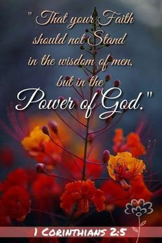 1 Corinthians KJV ~ That your faith should not stand in the wisdom of men, but in the power of God. Bible Verses Quotes, Bible Scriptures, Faith Quotes, Faith Bible, Biblical Quotes, Religious Quotes, Spiritual Quotes, Baruch Atah Adonai, Favorite Bible Verses