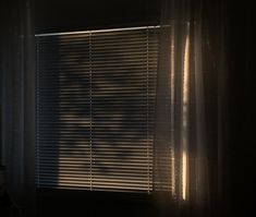 Pills, Blinds, Curtains, Gallery, Home Decor, Decoration Home, Roof Rack, Room Decor, Shades Blinds
