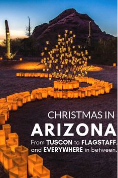 Christmas in Arizona- Your Guide to Holiday Fun in AZ. : Heading to AZ this Christmas? Everything you need to know about where to go and what to do this holiday season. Photo provided by Desert Botanical Gardens. Christmas Things To Do, Christmas Travel, Christmas Events, Arizona Road Trip, Arizona Travel, Vacation Destinations, Vacation Spots, Places To Travel, Places To See