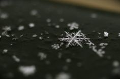 have you ever looked at the snowflakes as they fall on you?  they really are magical
