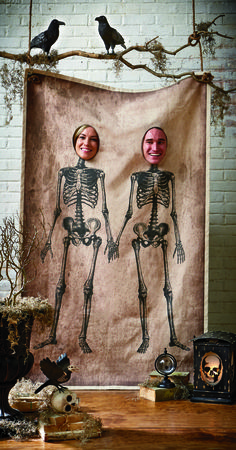 Shop Martha Stewart Living Halloween Décor at Home Decorators Collection