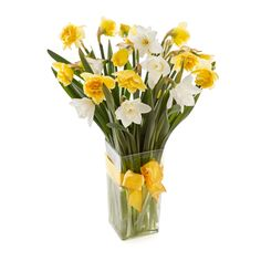 Brighten any home with these daffodils in yellow and orange.