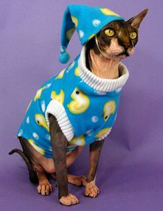 Grab that camera for a funny photo op - your cat in The Cat's Pajamas! Pajamas close with Velcro down the back and include a nightcap with elastic chin strap.