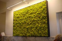 This moss wall hanging is at the landmark Presideo building in San Francisco.