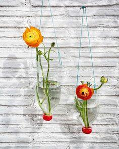 Hanging Vases very Flirtatious