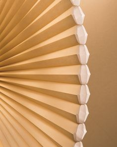10 Duette Architella Honeycomb Shades Ideas Honeycomb Shades Window Styles Window Coverings