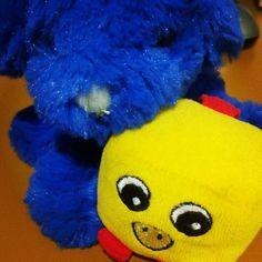 Mi nuevo #peluche europeo, Twingo, cuidando de su hermanito Pulcino #softtoys #peluches #pelucheando
