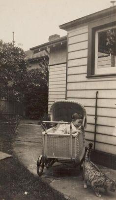 Baby in Pram  Cat, Backyard, Ivanhoe, Melbourne 1939