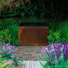 SuperStock - Corten-Steel tanks create unusual, rusty water feature. Viburnum rhytidifolium rising above shaggy box and grasses. This water feature has resonating ripples. England, Chelsea, London.