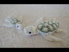 Albino Green Sea Turtle Tutorial, Collaboration with CoolRiceBunnies