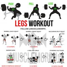 PUSH PULL LEGS WORKOUT MUSCLEMORPH BODYBUILDING GYM EXERCISE