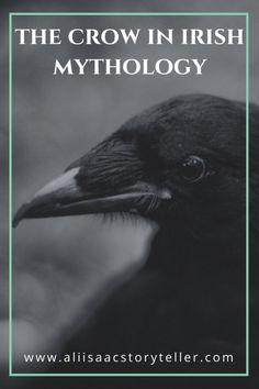 The Crow in Irish Mythology the crow in irish mythology.aliisaacstory… The Crow in Irish Mythology The Crow, Folklore, Celtic Mythology, Celtic Goddess, Goddess Art, Roman Mythology, Moon Goddess, Greek Mythology, Irish Culture