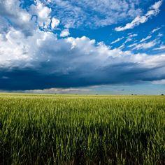 Storm clouds over the Oklahoma prairie.   As per source: Oklahoma! by Mike Klemme, via Behance (near Carmen, OK)