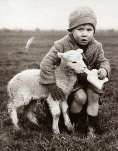 boy feeding lamb, 1937