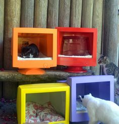 Upcycle old tv's or computer monitors into a pet bed- good idea for ferals, too!