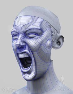 Anatomy For Sculptors - Rage WIRE
