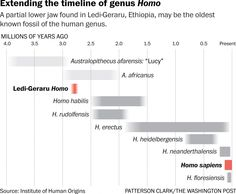 The human family may have evolved half a million years earlier than we thought - The Washington Post