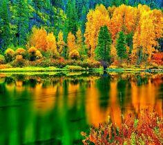 Forever Autumn!