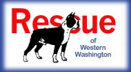 Working through Seattle Purebred Dog Rescue (SPDR), we have successfully placed over 212 Boston Terriers since 2/1/2001.    We are dedicated to placing unwanted, lost, neglected or abandoned Boston Terriers into loving, caring, responsible homes.