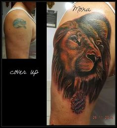 Cover up Lion