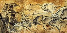 Lions, Chauvet Cave, France. A new batch of 88 radiocarbon dates has further refined the cave's chronology. Humans used the cave from 37,000 to 33,500 years ago and again from 31,000 to 28,000 years ago, the research has found.