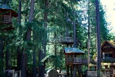 Out'n'About Treehouse Resort   Nicolas Boullosa/Flickr