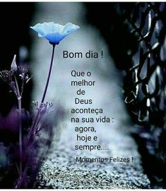 Bom dia Inspirational Quotes, Movie Posters, Good Morning Photos, Good Night Msg, Verses, Romantic Pics, Ser Feliz, Biblia, Life