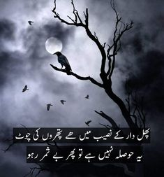 Urdu Funny Poetry, Urdu Funny Quotes, Love Quotes In Urdu, Urdu Love Words, Poetry Quotes In Urdu, Best Urdu Poetry Images, Love Poetry Urdu, Emotional Poetry, Poetry Feelings