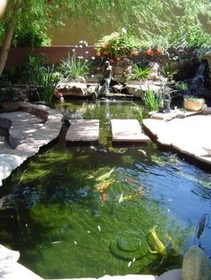 Beautiful backyard koi pond!! Yes! Add a couple of chairs on those middle rocks, and sounds like a winner to me!