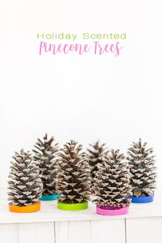 Holiday gift ideas to make using pinecones and essential oils. Pine cone crafts to make for Christmas.