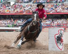2014 Cheyenne Frontier Photos by: Tyler Stockton Rodeo Life, Barrel Racing, Tack, Westerns, Horses, Photos, Animals, Pictures, Animales