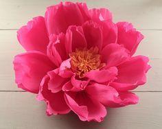 Giant Crepe Paper Flower  https://www.smilemercantile.com/blogs/tutorials/giant-paper-flower-for-a-diy-wedding-backdrop-craft-tutorial