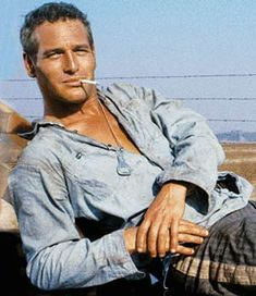 Paul Newman in Cool Hand Luke ~ for the record, every guy basically thinks/wishes this were him . . .