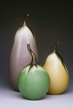 Gourd Still Life - 11 x 9 x 9 inches Jan Bilek