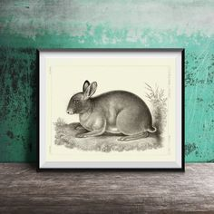 INSTANT DOWNLOAD French Rabbit Bunny Red by BackAlleysBackRoads