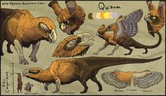 Quisum Ref v.3 by Quisum on deviantART