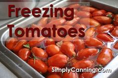 Freezing tomatoes is a snap. They peel super easy when you thaw them out.  Click through to article and Video included.  http://www.simplycanning.com/freezing-tomatoes.html