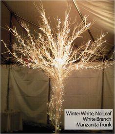 Sculpt Tree available through Event Extravagant! http://www.sculptree.com
