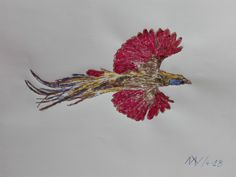 ave del paraiso 3