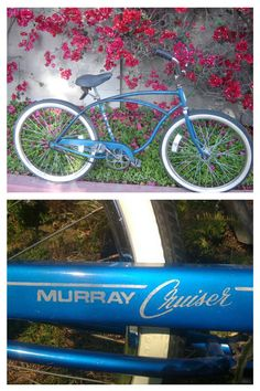 Missin' my Strand Cruiser...This was my mode of transport in HB...I miss it :-( Had a bell and a white basket too :-)