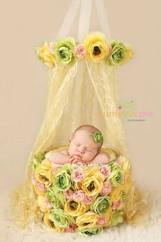 2014 props baby bucket flowers set for baby newborn hand-woven children photography Loja Online Photography Backdrops, Creative Photography, Children Photography, Newborn Photography, Photo Backdrops, Photography Flowers, Outdoor Photography, Photography Ideas, Newborn Pictures