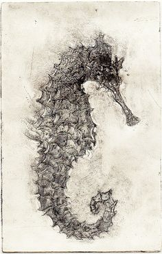 I remembered I like seahorses when I was a kid. Even wanted to get a tattoo of it. lol. Seahorse.  via matthewpugh.blogspot.com