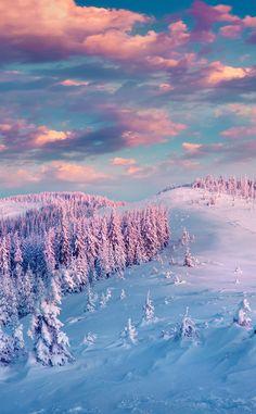 ❄️,winter,snow,winterwonderland❄️,pretty,greatbackgroundpic