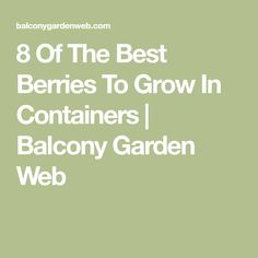 8 Of The Best Berries To Grow In Containers | Balcony Garden Web