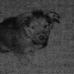 Turn your photo into super-cool bead art.