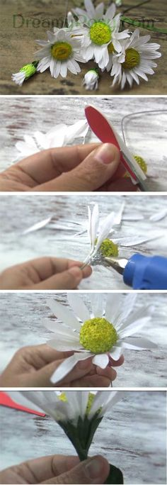 Free template and tutorial for life-like paper daisy flower