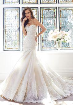 Sophia Tolli - Y21439