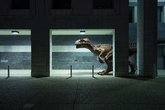 The Wildlife - Dinosaur Portraits Series by Benoit Lapray #inspiration #photography