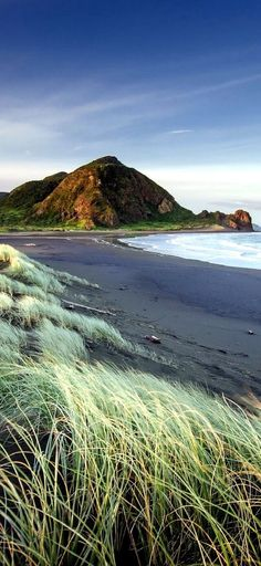 """Auckland beach - New Zealand. """"On landing in Auckland I certainly felt a little lonely, being only fifteen [. Visit New Zealand, New Zealand Travel, New Zealand North, Auckland New Zealand, New Zealand Beach, Kia Ora, Travel Around The World, Around The Worlds, Sea Photography"""